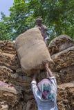 Grandi importi dei tabacchi asciutti che caricano in un camion di trasporto fuori di Dacca, manikganj, Bangladesh Fotografie Stock Libere da Diritti