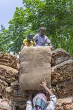 Grandi importi dei tabacchi asciutti che caricano in un camion di trasporto fuori di Dacca, manikganj, Bangladesh Immagine Stock Libera da Diritti