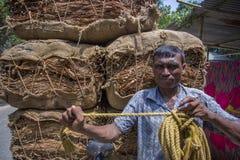 Grandi importi dei tabacchi asciutti che caricano in un camion di trasporto fuori di Dacca, manikganj, Bangladesh Fotografia Stock Libera da Diritti