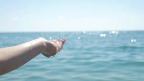Grandi meduse nella mano dell'uomo closeup archivi video
