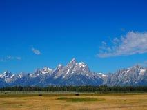 Grandi montagne del parco nazionale di Teton con il bisonte Immagine Stock