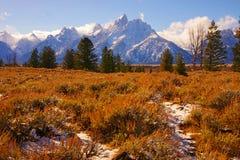 Grandi montagne di Teton Fotografie Stock Libere da Diritti