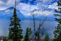 Grandi montagne e Jackson Lake di Teton ad alba fotografie stock