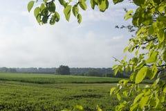 8 grandi nubi blu ENV facile distante dell'aggiunta sistema un villaggio rurale rosso dei cinque della priorità alta di formato d Immagine Stock Libera da Diritti
