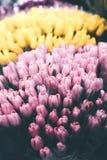 Grandi pacchi dei fiori venduti nel negozio di fiore al giorno delle donne, molla fotografia stock libera da diritti