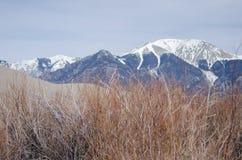 Grandi parco nazionale e prerogativa delle dune di sabbia con i picchi alpini del Sangre de Cristo Mountains Fotografie Stock Libere da Diritti