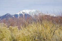 Grandi parco nazionale e prerogativa delle dune di sabbia con i picchi alpini del Sangre de Cristo Mountains Immagine Stock Libera da Diritti