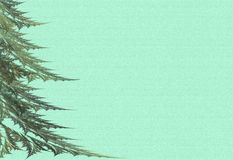 Grandi pelliccia-alberi su una priorità bassa verde Fotografia Stock