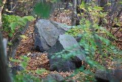 Grandi pietre Fotografia Stock