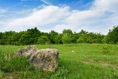 Grandi pietre su un prato verde Fotografia Stock Libera da Diritti