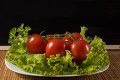 Grandi pomodori Fotografia Stock