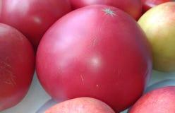 Grandi pomodori rossi Fotografia Stock Libera da Diritti