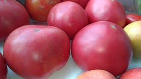 Grandi pomodori rossi Immagine Stock