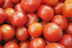 Grandi pomodori rossi in mucchio, alimento ecologico del fondo luminoso di progettazione Fotografia Stock Libera da Diritti