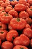 Grandi pomodori rossi sul vassoio Fotografie Stock Libere da Diritti