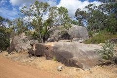 Grandi rocce marroni in John Forrest National Park Immagini Stock