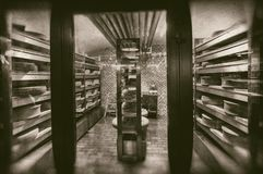 Grandi ruote di formaggio che maturano nella cantina della latteria del deposito - retro fotografia fotografie stock libere da diritti
