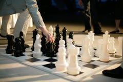 Grandi scacchi Immagine Stock Libera da Diritti