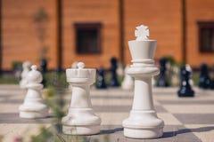 Grandi scacchi su un fondo del campo di legno di erba e della casa Fotografie Stock