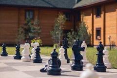Grandi scacchi su un fondo del campo di legno di erba e della casa Fotografie Stock Libere da Diritti