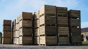 Grandi scatole di legno, recipienti, contenitori in pieno delle mele mature verdi durante il periodo di raccolta annuale, support video d archivio