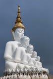 Grandi statue di Buddha di bianco cinque che si siedono in tempio di Wat Phra That Pha Son Kaew Immagini Stock