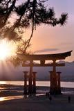 Grandi tori di Miyajima nel tramonto fotografie stock libere da diritti