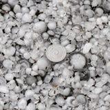Grandine graduata con una pi? grande moneta, chicchi di grandine sulla terra dopo la grandinata, grandine di grande dimensione immagini stock libere da diritti