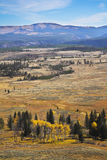 Grandiose autumn landscape. In Yellowstone national park Stock Images