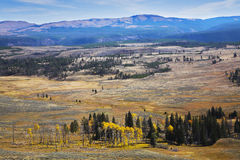 Grandiose landscape. In Yellowstone national park Royalty Free Stock Images