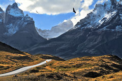 Grandiose landscape in the Chilean Andes. The road between turned yellow hills goes to snow-covered black rocks Royalty Free Stock Image