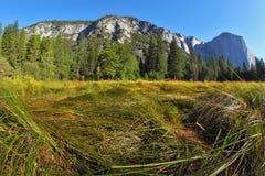 Grandiose landscape in a valley. World-wide well-known Yosemite park. Sunrise, autumn Stock Photos