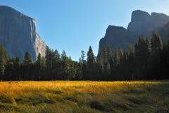 Grandiose landscape in a valley Yosemite park. Grandiose landscape in a valley world-wide well-known Yosemite park. Sunrise, autumn Royalty Free Stock Photos