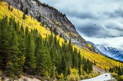 The concept of active tourism. The grandiose nature of the Rockies of Canada. The road 93 `Icefields Parkway`. The concept of active tourism Royalty Free Stock Photos
