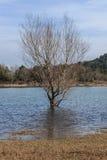 A grandiosidade do grande lago antes de mim Foto de Stock