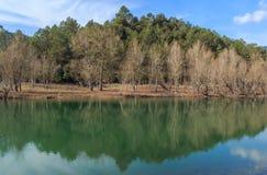 A grandiosidade do grande lago antes de mim Foto de Stock Royalty Free