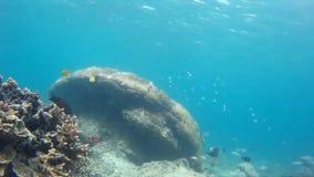 Grandioze oceanview en ontspannende vakantie, van een hoogte stock video