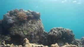 Grandioze oceanview en ontspannende vakantie, van een hoogte stock videobeelden