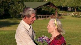 Grandma και grandpa σε έναν περίπατο σε ένα ηλιόλουστο πάρκο απόθεμα βίντεο