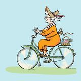 Grandma on bicycle goes to picnic. Active Longevity. Healthy old age. Happy senility. Vector illustration stock illustration