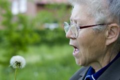 Grandma blowing. Grandma in garden royalty free stock photos