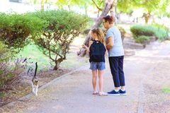 Grandma and granddaughter looking at homeless kitty in outdoor park. royalty free stock photo