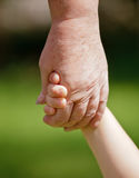 Grandma holding grandchilds hand Royalty Free Stock Images
