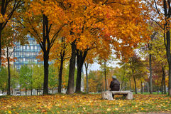 Grandma is resting in autumn park. Stock Image