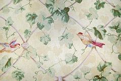 Grandma's Wallpaper Royalty Free Stock Photos