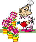 Grandma is watering the flowers Royalty Free Stock Images