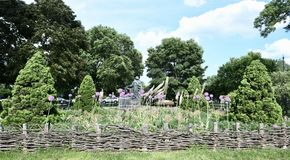 Grandmother's Garden Royalty Free Stock Image