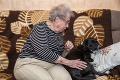 Grandmother on the couch with a dog Royalty Free Stock Photography