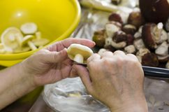 Grandmother cuts suillus mushrooms in a large yellow plate stock photography