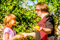 Grandmother giving her Granddaughter Clementine. Grandmother is giving Clementine to her Granddaughter from the garden stock photos